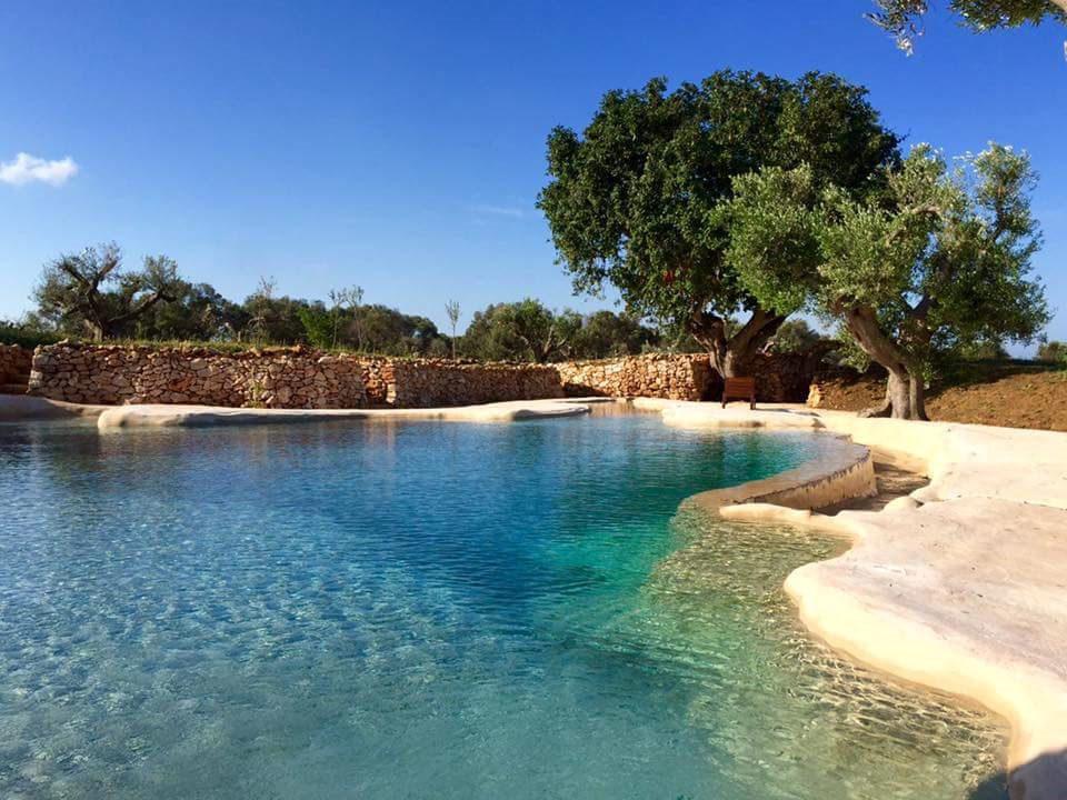 SYS Piscine piscine naturale